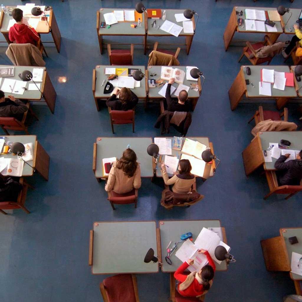 Образование в Португалии. Как устроена школьная система?